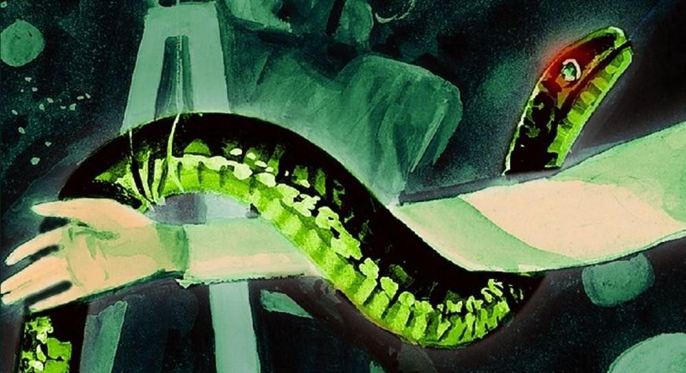 Serpents et échelles - Extrait