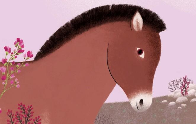 L'histoire vraie de Pamir le cheval de Przewalski
