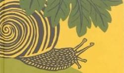 Histoire d'un escargot qui découvrit l'importance de la lenteur