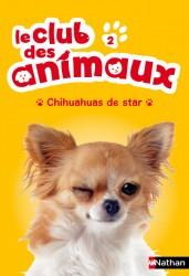 Chihuahuas de star