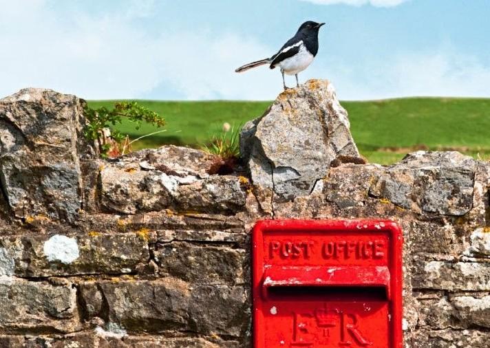La lettre qui allait changer le destin d'Harold Fry arriva le mardi…