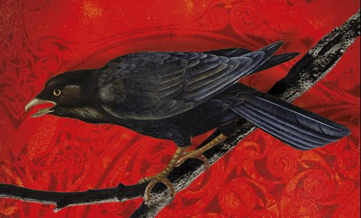 La confrérie du corbeau